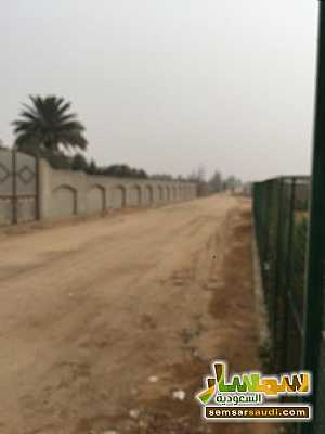 Land 8,575 sqm For Sale Cairo Alexandria Desert Road Giza - 3