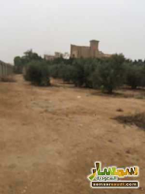 Land 8,575 sqm For Sale Cairo Alexandria Desert Road Giza - 4