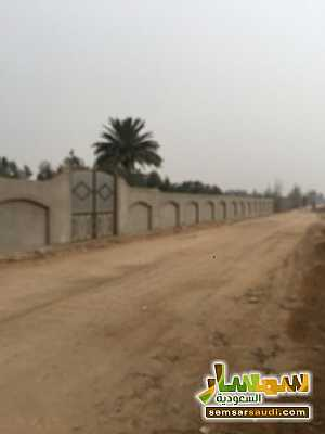 Land 8,575 sqm For Sale Cairo Alexandria Desert Road Giza - 6
