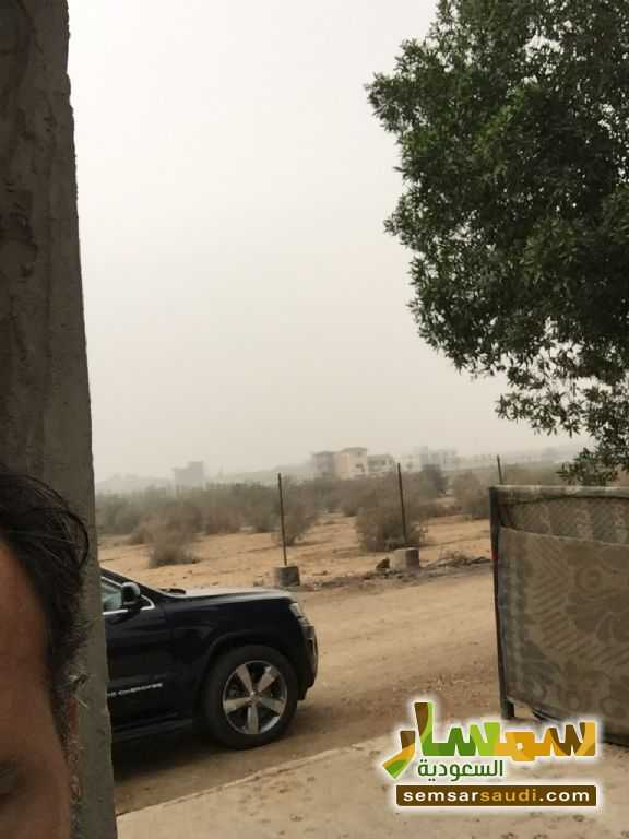 Photo 15 - Land 8,575 sqm For Sale Cairo Alexandria Desert Road Giza