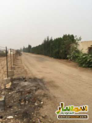 Land 8,575 sqm For Sale Cairo Alexandria Desert Road Giza - 16