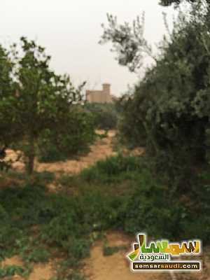 Land 8,575 sqm For Sale Cairo Alexandria Desert Road Giza - 22