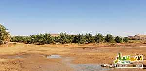 Farm 500,000 sqm For Sale Al Ghat Ar Riyad - 6