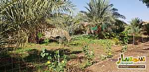 Farm 500,000 sqm For Sale Al Ghat Ar Riyad - 1
