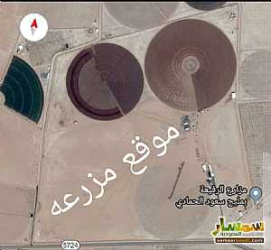 Ad Photo: Farm 1250 dunam in Saudi Arabia