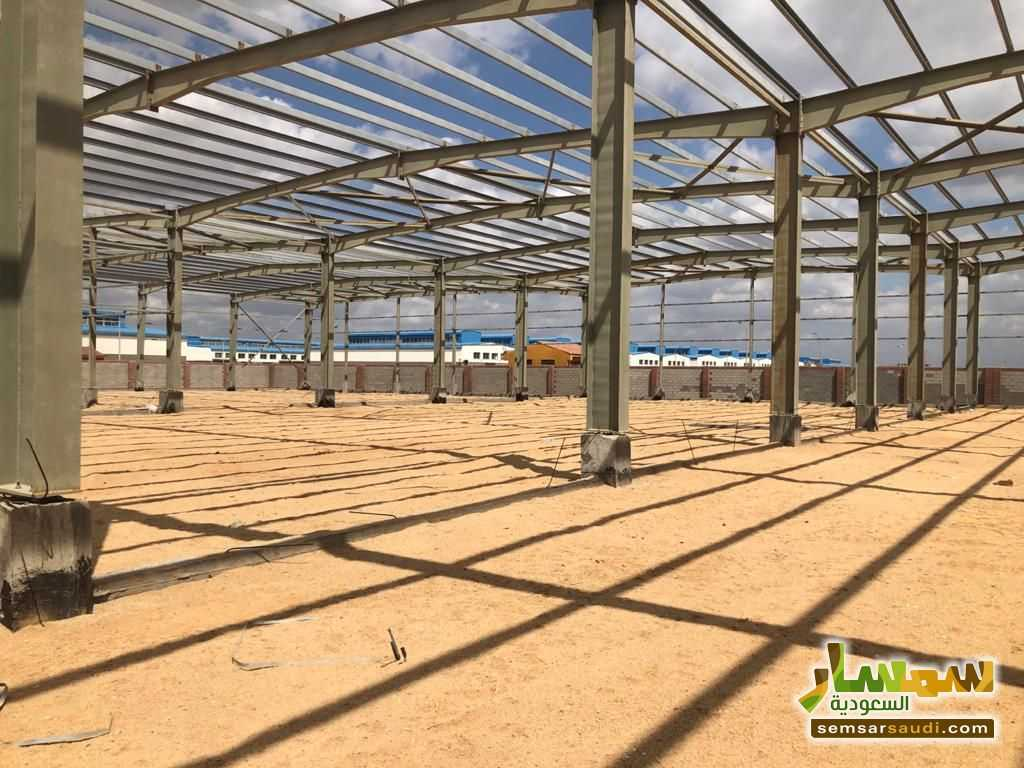 Ad Photo: Commercial 14500 sqm in Sadat  Minufiyah